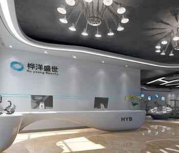 嘉禾桦洋科技公司办公室设计